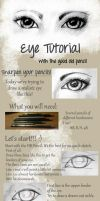 How to draw... a realistic Eye? by SrSilversky