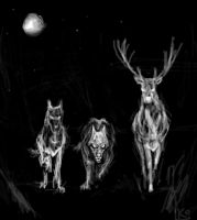 Marauders by Kleolanda