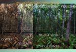 Premade Forest Background Pack by KarahRobinson-Art