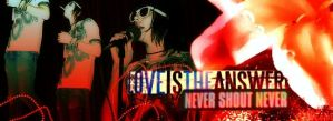 Love is the Answer- NSN by withoutrainbow