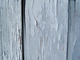 Texture Wood photo by yanasprospect