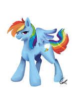 Rainbow Dash by Splattered-Wolf