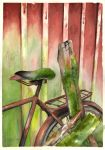 The old bicycle by Ekqvist