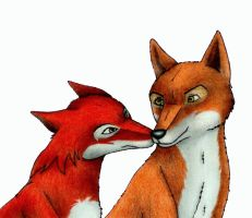 The foxes of Farthing Wood by Ereska