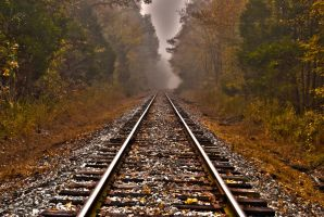 morning fog rail track by Tommy8250