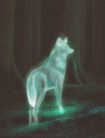 Expecto Patronum by KeithMoore