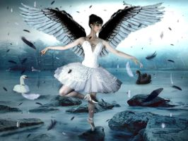 Swan Lake by Lolly1123