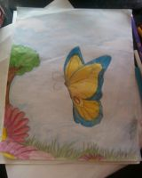 Butterfly by Kittery