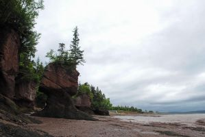Hopewell Rocks 7 by LucieG-Stock