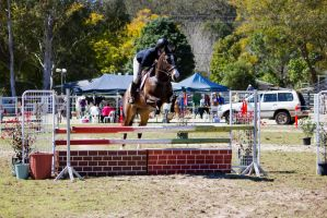 STOCK - Canungra Show 2012 127 by fillyrox