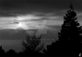 cloudy night by dp-designs