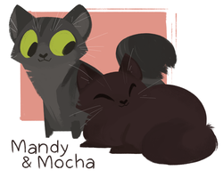 Mandy and Mocha by themsjolly
