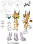 Ash Bunny ref Sheet by Skeleion