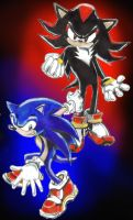 Sonic and Shadow by Hulkster77