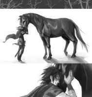 SotC: I'm glad you're okay by Serain