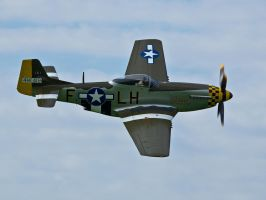 P51 Mustang Janie by davepphotographer