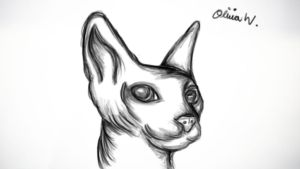 Sphynx by FluffehPickleLivi