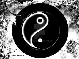 YING YANG THE ART ITSELF by LordFreeza