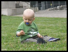 Playing in the grass by jibirelle