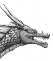 .: Dragons Head :. by Chronic-Shadow