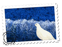 Dove Stamp by December012