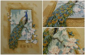 Peacock Cross-stitch by jenninn