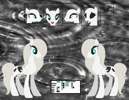 Silver Rain's official reference sheet by Starlollipop