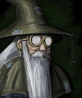 In Game Portrait of the Geriatric Mage by BABAGANOOSH99