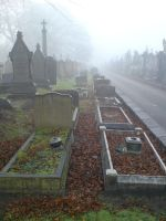 Foggy at the cemetery 11b by rudeturk