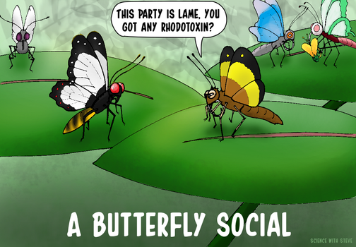 Butterfly Social by ScienceWithSteve