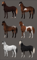 Stallion Sale - OPEN by Nuklear-Bunnies