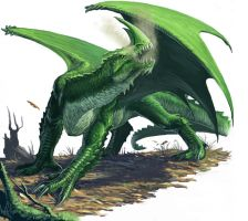 Green Dragon by BenWootten