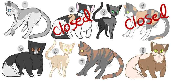 [OPEN] Cat Adopts (6/8 open) by MiqotesosAdopts
