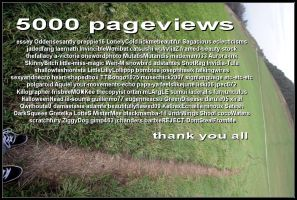 5000 pageviews by zero42