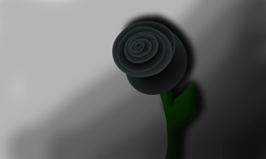 Black rose in the forest... by meloetta-shiny