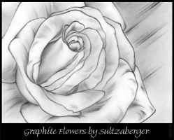 Graphite Flower 06-18-07 by Sultzaberger