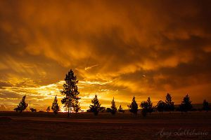 After the Storm by Ajay-L