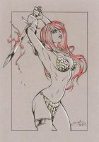 Red Sonja 2 Commission by Elias-Chatzoudis