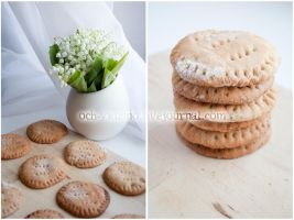 Vegan Cookies by julia-caramelina