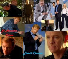 Horatio Caine by SerenetyTiedoll