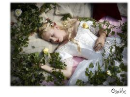 Sleeping Beauty ... III by Osnafotos