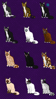 Offer Adopts- Warrior Cats closed by LadyLirriea