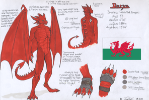 Daryn reference by Hunter-T-Wolf