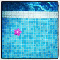 Pool Flower. by dovelife