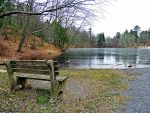 Bench At Fuller Lake (Winter Version) by TemariAtaje
