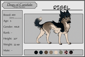 DoC: Rigel ~ Reference [Application Form] by A-Ori