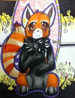 Red Panda by AmoreSyLv