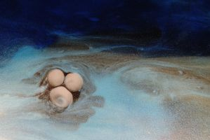 Oh Buoy, Deep Water, Sharp Crabs by Bibire