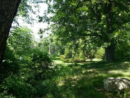 Green Place by GUDRUN355