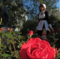 Red as rose - Umineko - Shannon - Cosplay by ViikateFretti